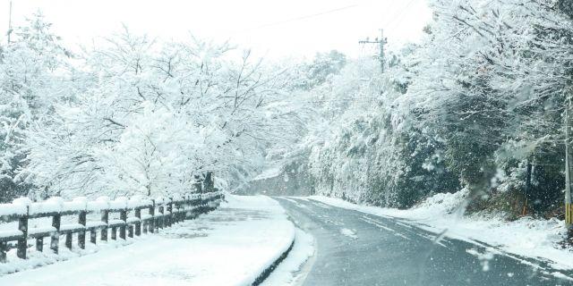 秋冬の交通事故を防ぐためには